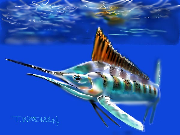 Blue Marlin Underwater Painting Animals Ipad Sketches amp Drawings