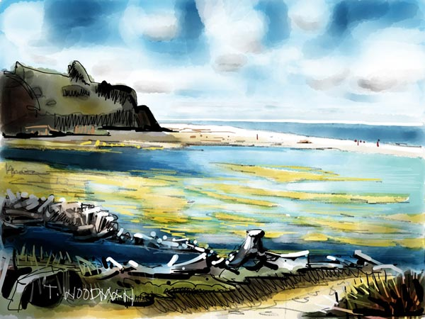 iPad Sketches Drawings Art Architect Thomas Woodman San Gregorio Beach California Big Sur Monterey Peninsula